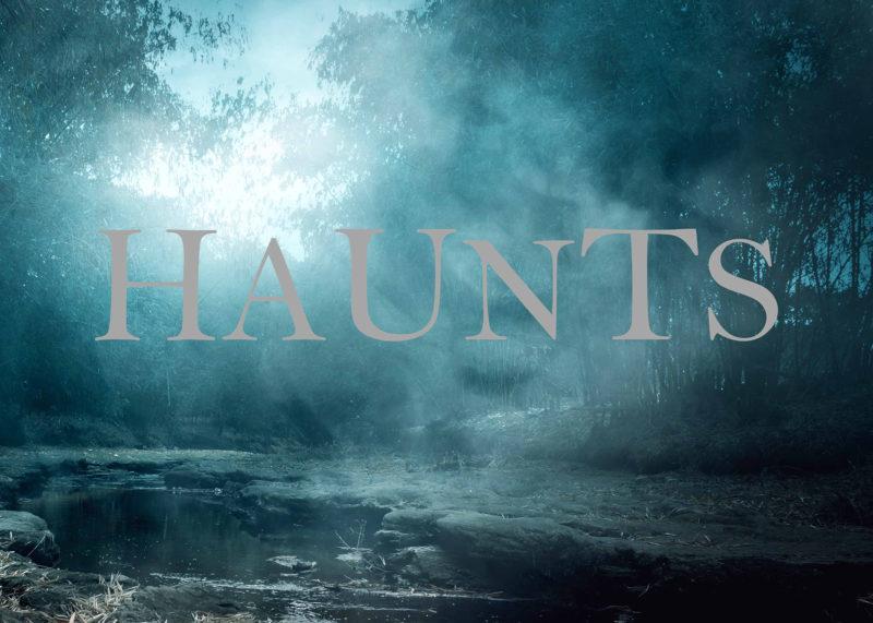 haunts eerie forest