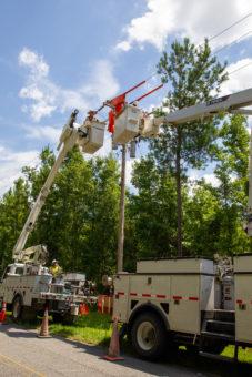 SVEC linemen in bucket trucks working on power poles near trees
