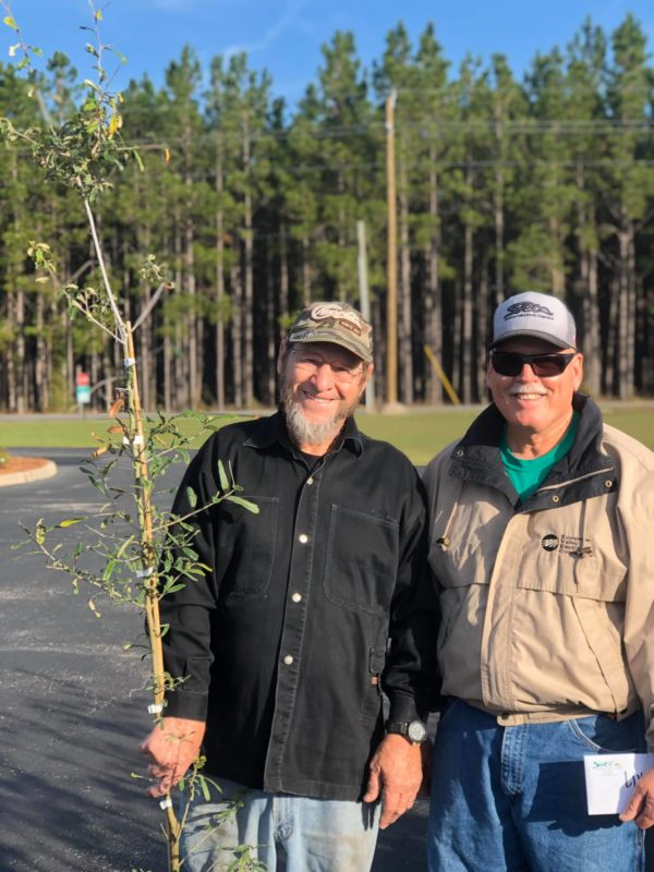 Two men outside, one holding a small tree.