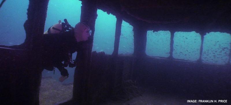 diver in ocean exploring shipwreck