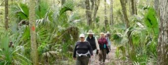 group of people hiking at Hillsborough River State Park