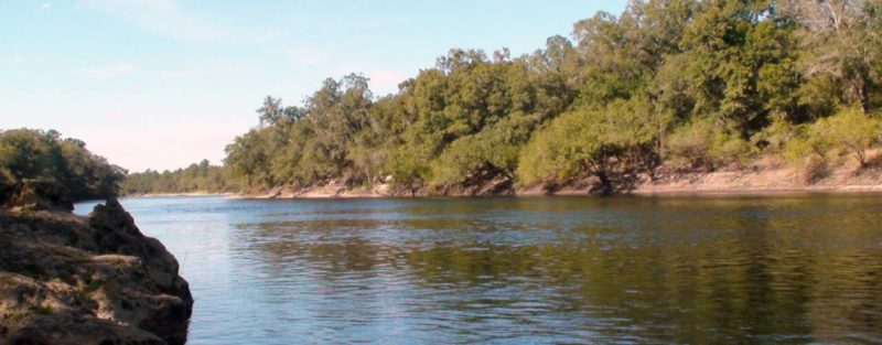 Lower Suwannee River