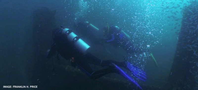 diver swimming with oxygen tanks