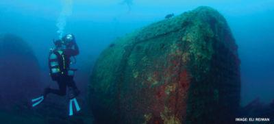 diver in ocean