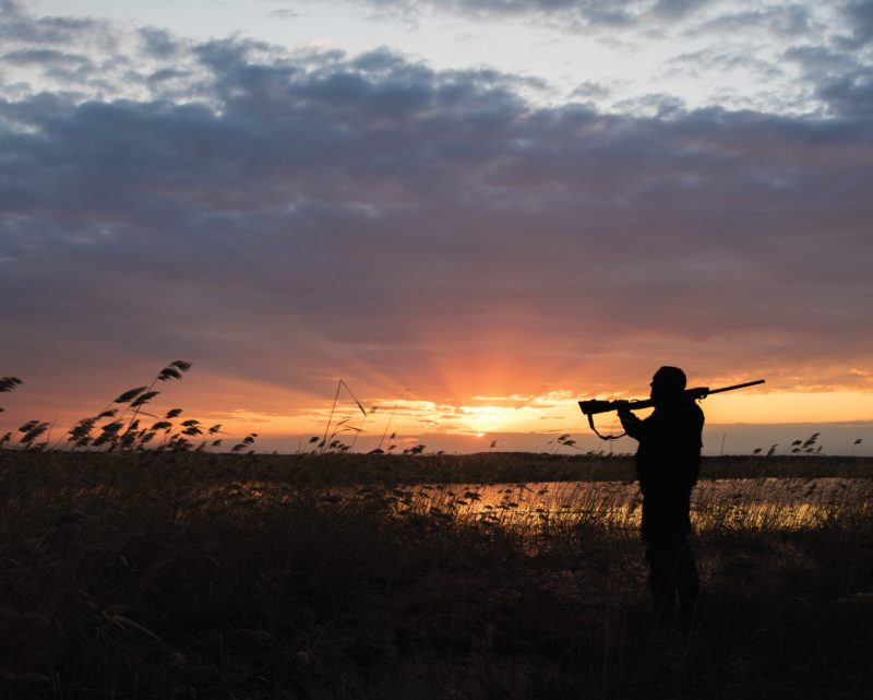 A person holding a rifle silhouetted in front of a setting sun