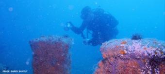 diver looking at ship
