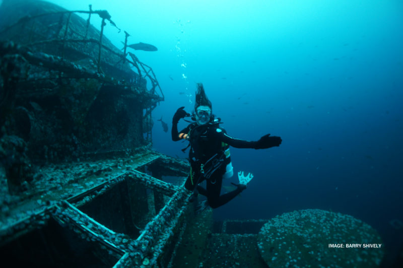 Explore the Panhandle Shipwreck Trail